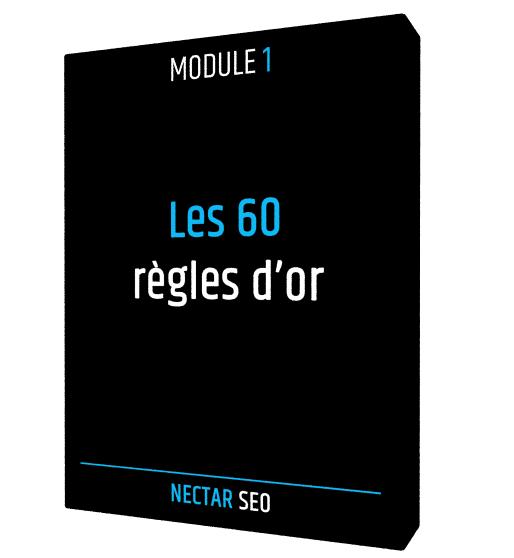 Module 1 : Nectar SEO (formation en ligne SEO)