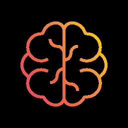 Optimiser l'apprentissage : Choix